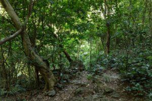 הפארקים של ויאטנם תכנון טיול בויאטנם