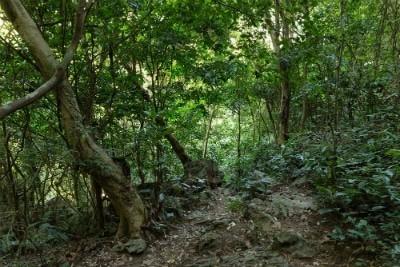 הפארקים של ויאטנם